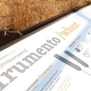 EXPO 2015 - Clusters: Getreide & Knollen - Info-Tafeln erklären auch hier, was im Beet daneben reift - und verdorrt / © Stefan Dömelt/comrhein