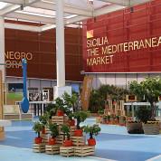 EXPO 2015 - Clusters: Mediterraneum - eine helle Halle als Ort der Begegnung / © Stefan Dömelt/comrhein