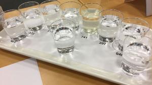 Beim Sensorikworkshop der DLG e.V. testeten die Teilnehmer ihre gustatorischen Fähigkeiten – und ordneten wässrige Lösungen nach Geschmack an.