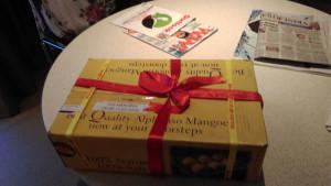 Als Geschenk für die Teilnahme am IEIA Open Seminar in Hyderabad wurde eine Kiste Mangos übergeben.